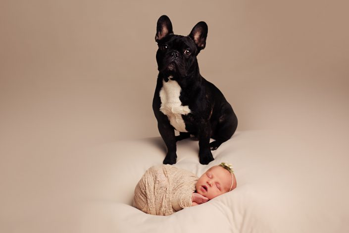 Newborn Photographer Glasgow - dog and baby